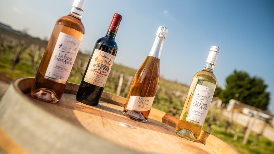 Nos vins vous accompagnent tout au long de l'année.